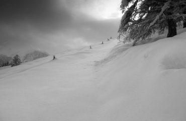 Snowshoes day - Guide Trek Alps - Viaggi in Natura