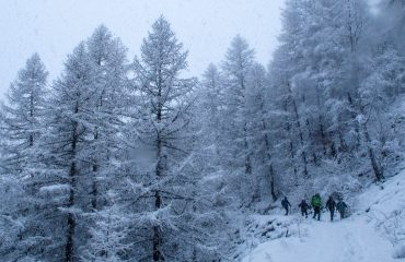 Snowshoes day - Guide Trek Alps - Viaggi in Natura