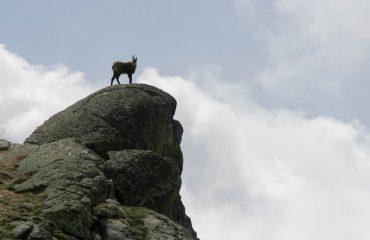 Alba al Mont Fallere - Guide Treck Alps - Emozioni in Natura
