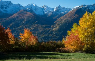 Ferragosto Punta Valdigne - Guide Trek Alps - Viaggi in Natura nel Mondo