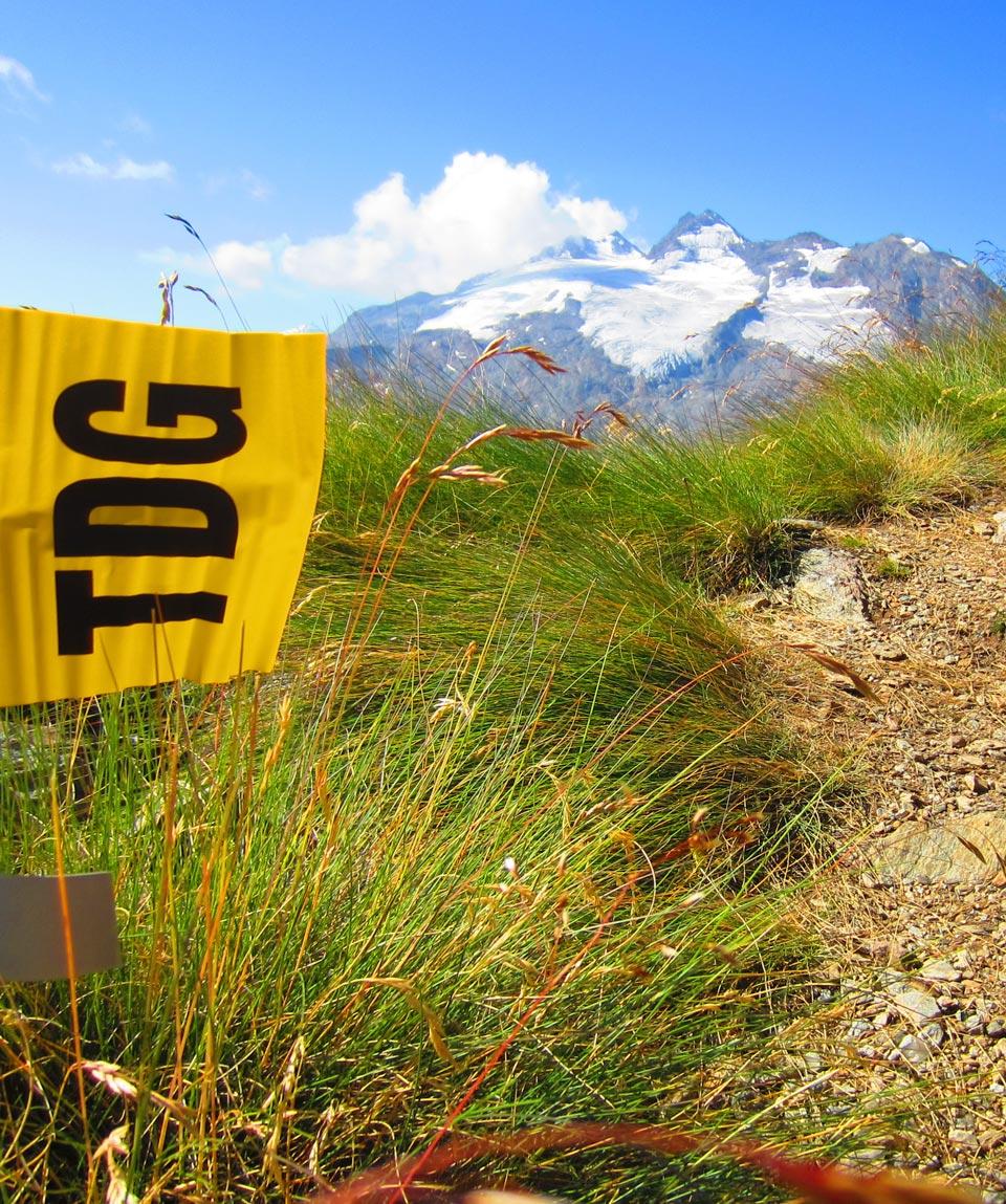 Trek in Tor - Guide Trek Alps - Viaggi in Natura nel Mondo