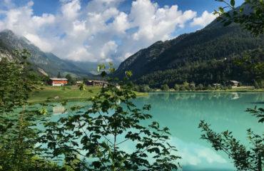 Camminando su l'oro - Guide Trek Alps - Viaggi in Natura nel Mondo