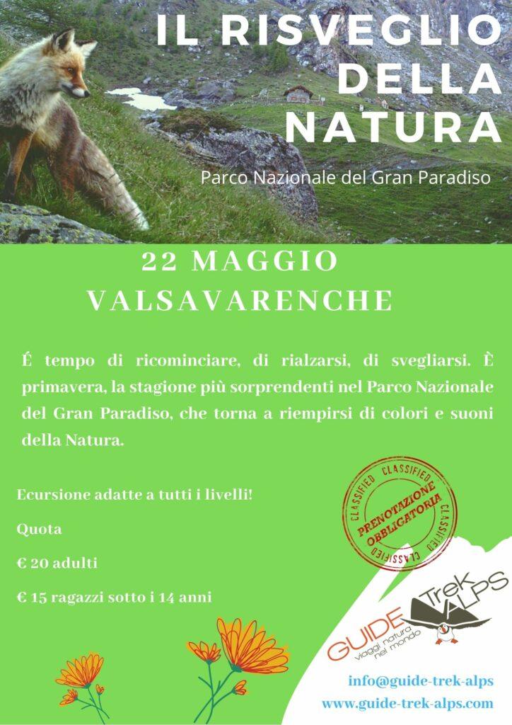 Risveglio - Guide Trek Alps - Viaggi Natura in Mondo